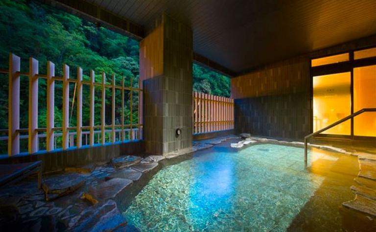 Hotel Hakone