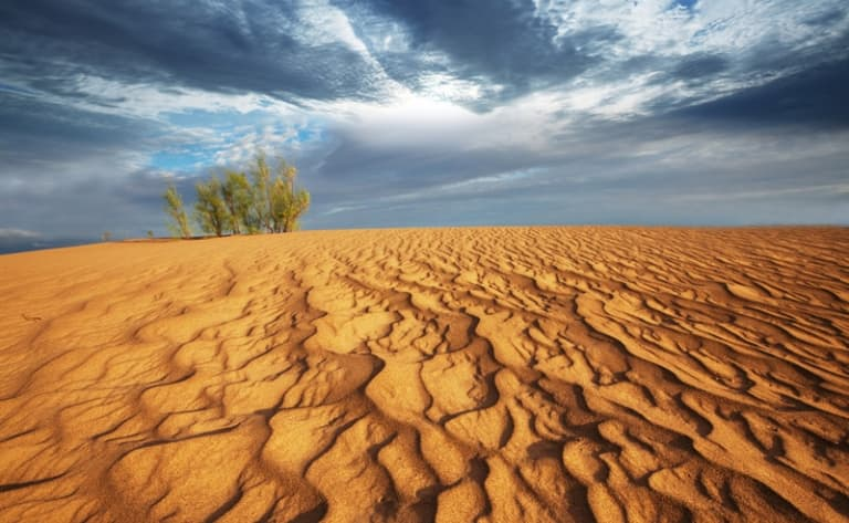 En piste pour les dunes de Khongoriin