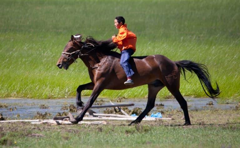 La vallée de l'Orkhon à cheval