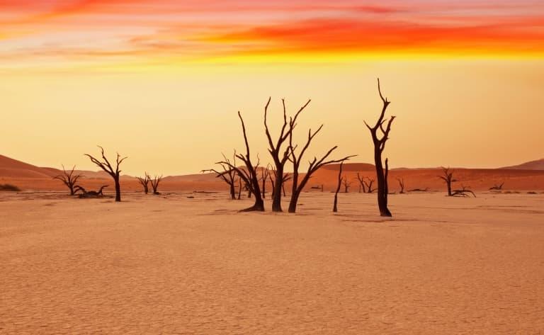 Ascension d'une dune du désert de Namib