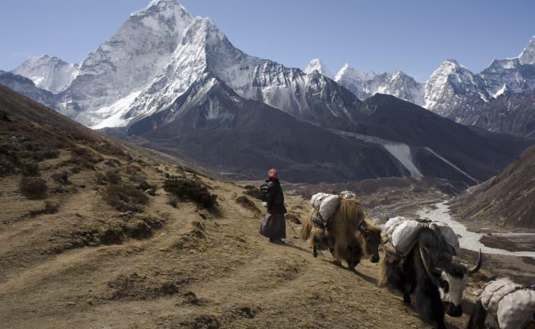 Retour vers le Népal