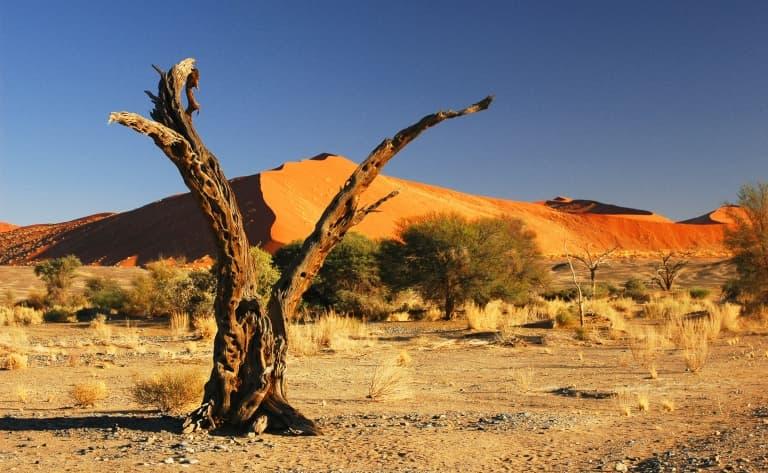 Découverte de Windhoek