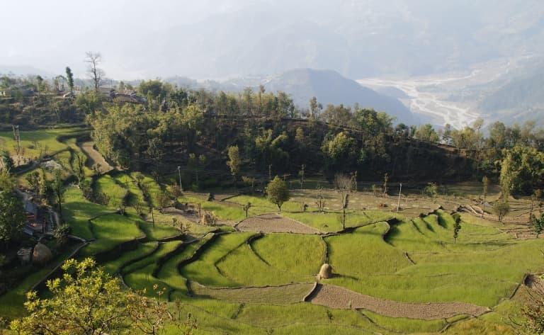 Forêt, rizières et petits villages