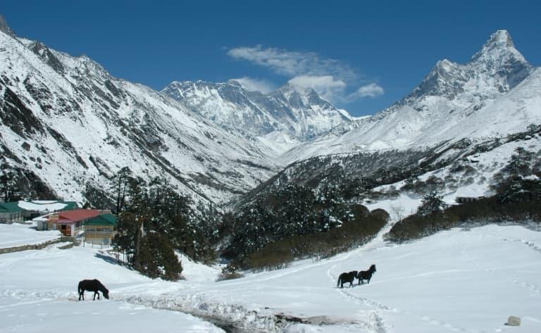 Poon hill : panorama sur les Annapurnas !
