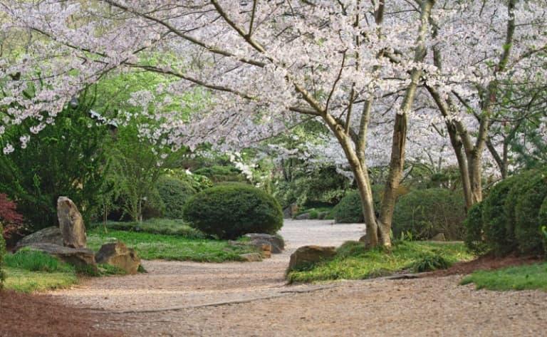 Le petit village de Yoshino
