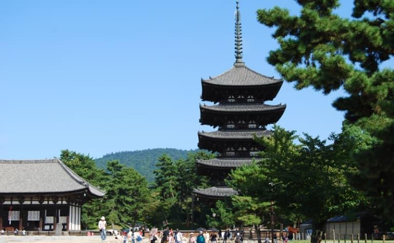 Visit Tôshôdai-ji and Hôryû-jitemples