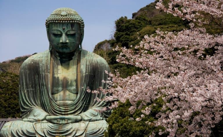 Admire the Daibutsu, a 13-metre high statue of Buddha