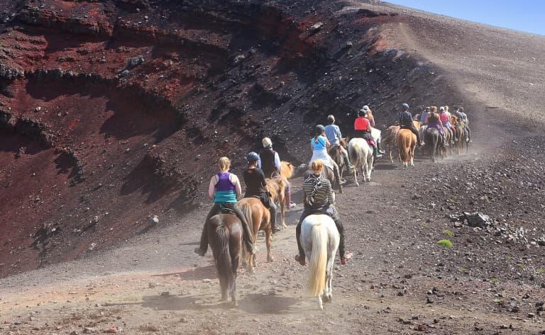 Rafting, chevaux islandais et phoques