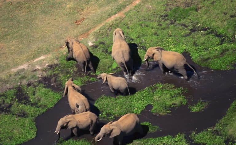 La réserve de Samburu, terre d'abondance
