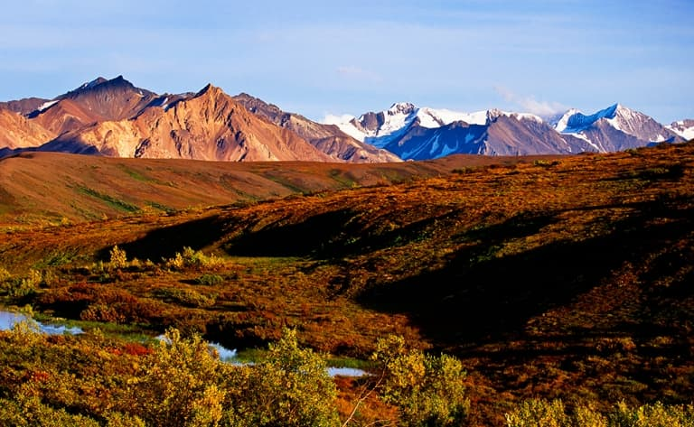 Beautés du Parc National de Denali