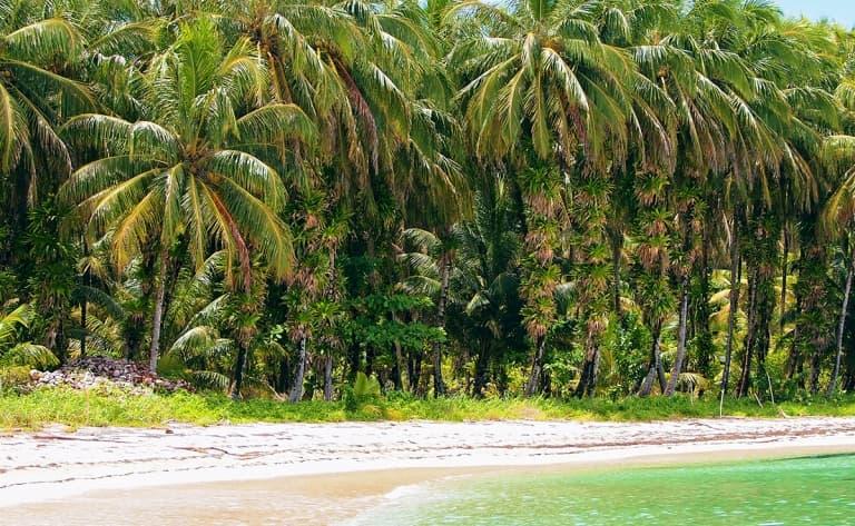 Farniente dans les eaux turquoises du Pacifique…