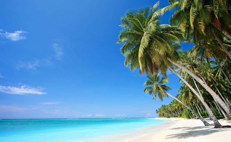 Départ pour Zanzibar