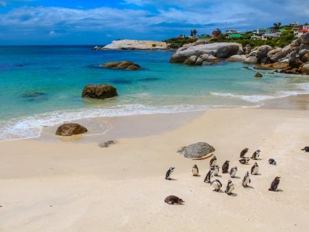 La Péninsule du Cap de Bonne Espérance