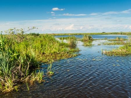 La réserve Esteros del Ibera, au Rincon del Socorro
