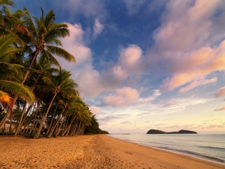 Détente et relaxation sous les cocotiers