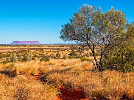Uluru, merveille d'Australie