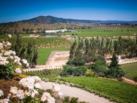 La région vinicole, à la Casona Matetic
