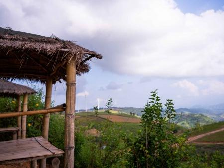 Mer de bambou de Yibin