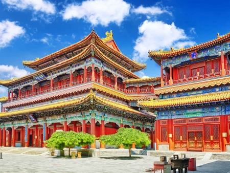 Pékin, comme un Pékinois