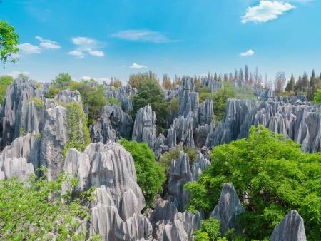 Kunming, forêt de pierre et temple des bambous