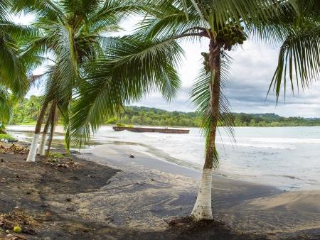 Cap vers les Caraïbes