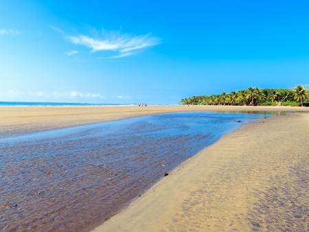 Plage, surf et farniente sur la Costa Ballena…