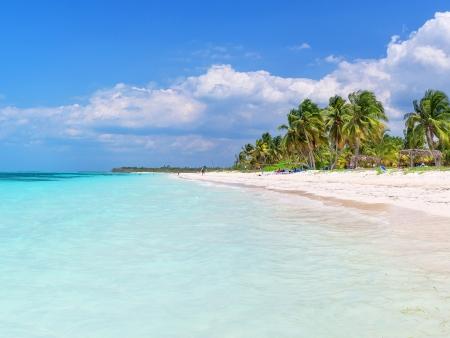 Détente sur la plage et découverte des fonds marins
