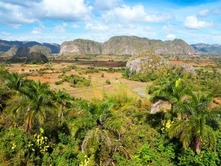 Cap vers l'Ouest : la vallée de Viñales