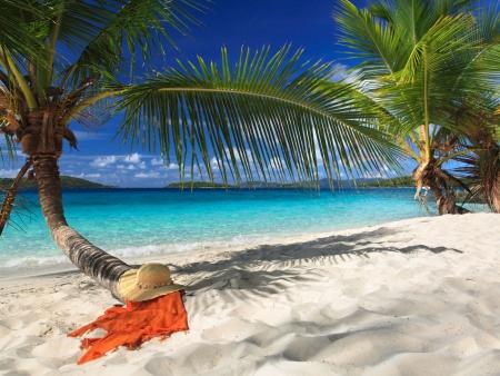 Cap sur les îles Cook !