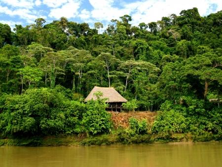 Bye Bye l'Amazonie !