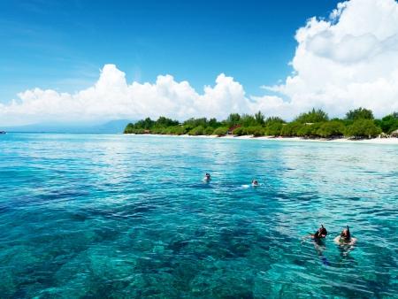 En liberté sur une île paradisiaque…