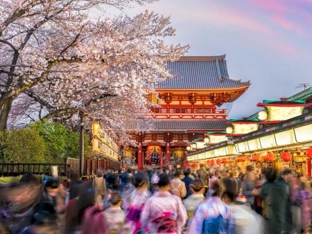 Flâneries et jeux dans Tokyo