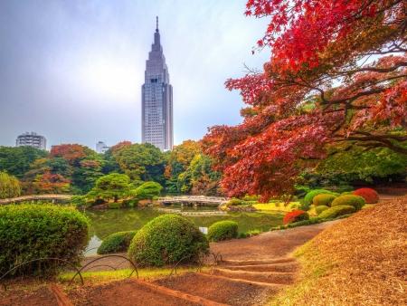 Tokyo, la Capitale bouillonnante