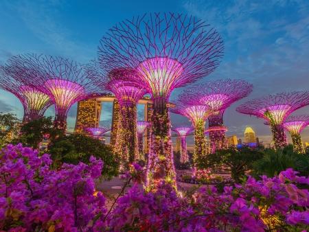 Vertigineuse Singapour