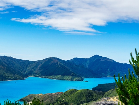 Cap sur les Marlborough Sounds