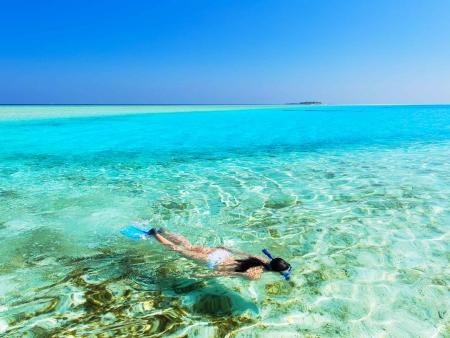 Idylle dans les eaux chaudes des atolls