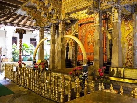 Temples bouddhiques sacrés de Kandy et Dambulla