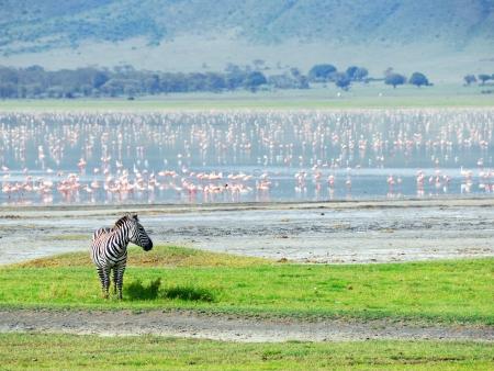 Explorations en terre Masaïs