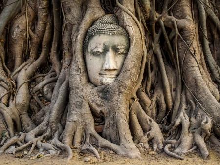Journée de découverte d'Ayutthaya