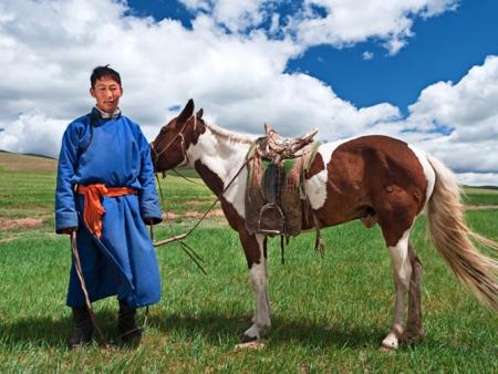 Les chevaux sauvages de Prjewalski