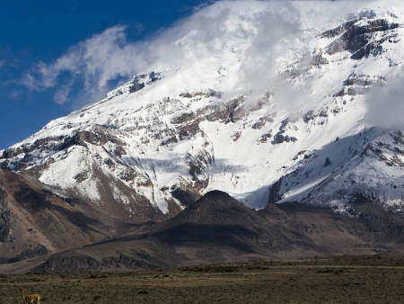Ascension du Chimborazo