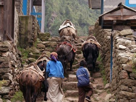 Monastère de Khumjung