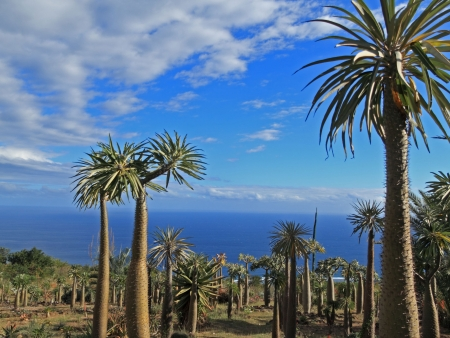 Artisanat des Hautes Terres malgaches