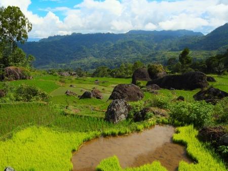 En route pour le pays Toraja