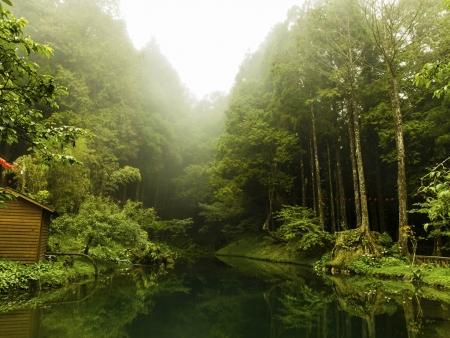 Vers les contrées montagneuses de Taiwan