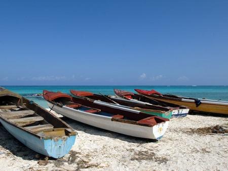 Bienvenue en Jamaïque !