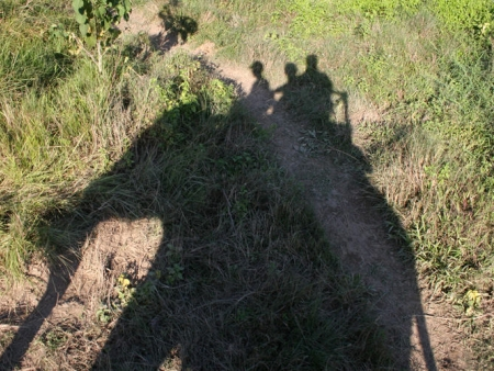 Activités dans la jungle