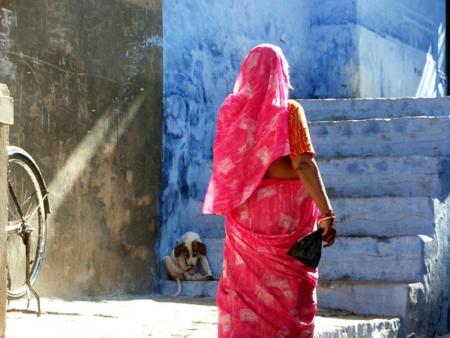 Visite des Temples Jaïns de Ranakpur