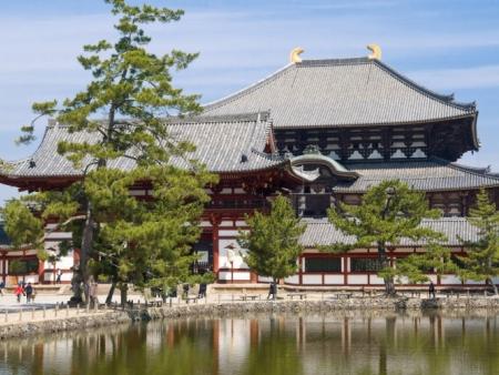 Les daims de Nara