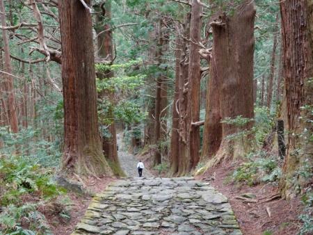 Les chemins de pèlerinage du Kumano Kodo